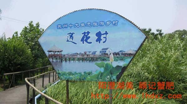 阳澄湖边上的性价比高的农家乐价格多少蟹的学问还真的多