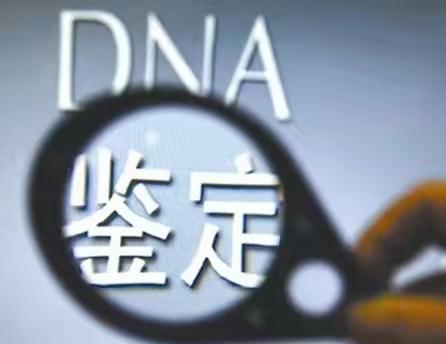 很好的孕期产前无创DNA鉴定机构速度快