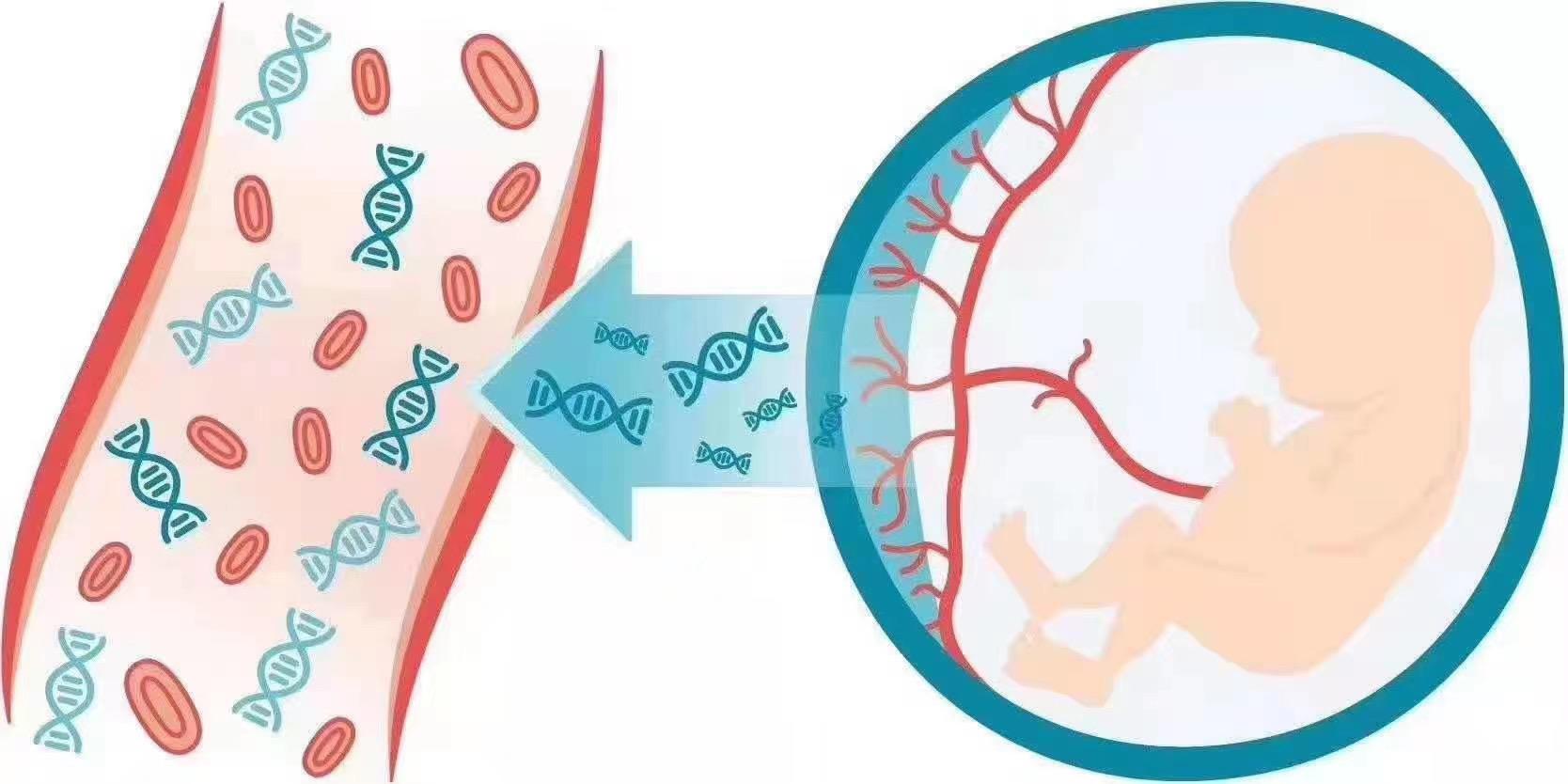 专业的DNA亲子鉴定标准正规资质